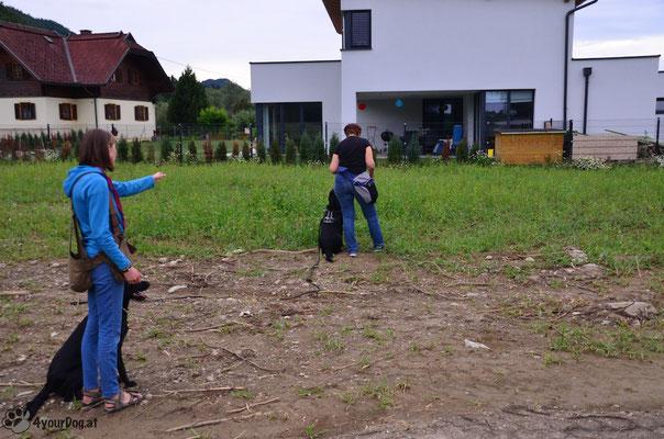 Training mit Aron