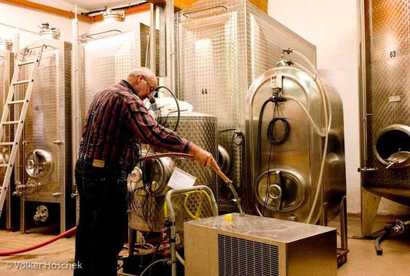 Weingut Graf Adelmann - Kellermeister bei der Arbeit