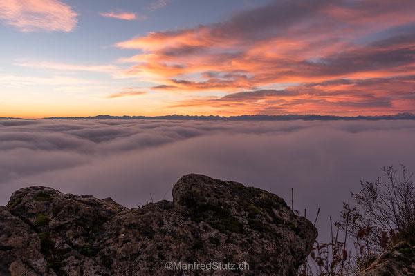 Über dem Nebelmeer auf der Wasserfluh, Kanton Aargau