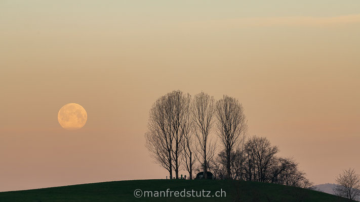 Monduntergang am Boll in Fislisbach, Kanton Aargau