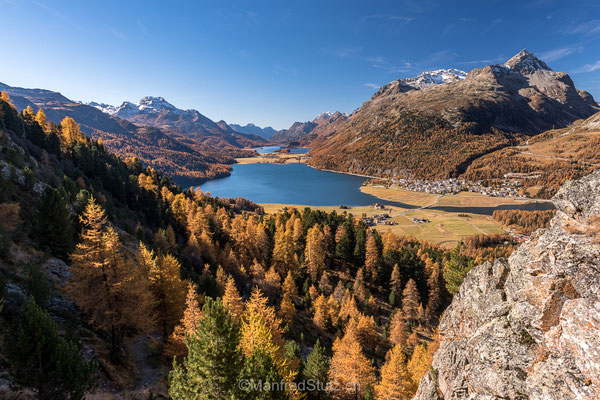 Engadiner Seenplatte im Herbst, Lej da Silvaplauna, Silvaplanersee
