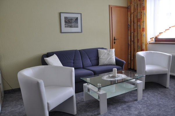 Wohn - Schlafraum    -  Appartement 1