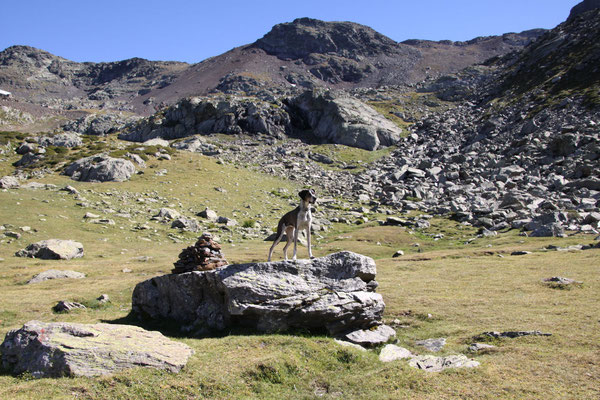 Wandern im Arcalis Massiv (Andorra).