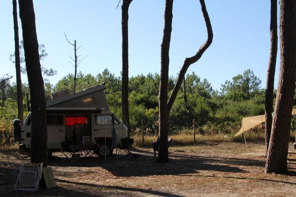 Camping Les Tourterelles in St. Girons Plage (Atlantik)