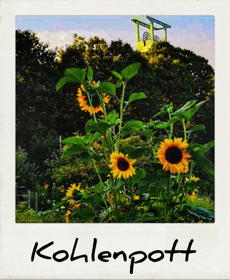 Förderturm, Sonnenblume, Ruhrgebiet