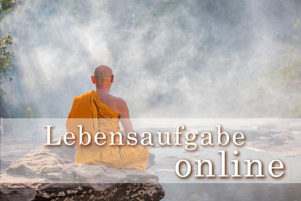 Lebensaufgabe Seelenplan online