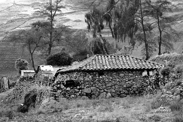 Raíces de piedra 2. Edo Mérida. Andes venezolanos