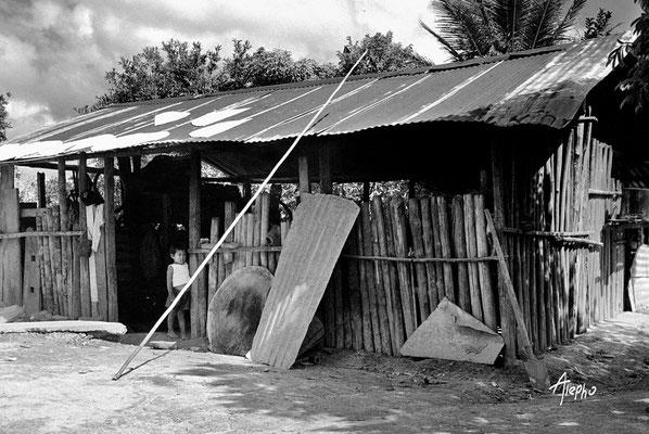 s/t. La gran Sabana, Edo Bolívar, Venezuela