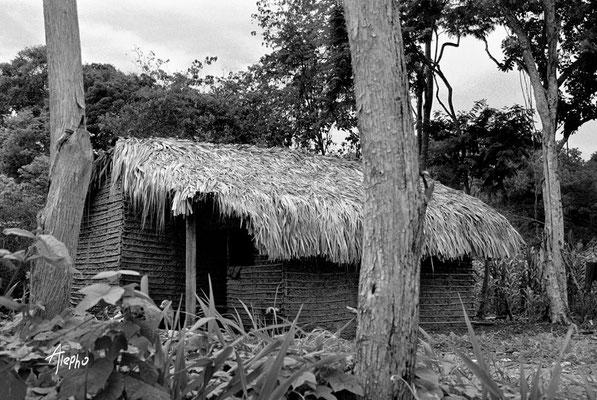 Mimetismo. Casa de autoconstrucción hecha al estilo de la vivienda social gubernamental. Güiria, Venezuela