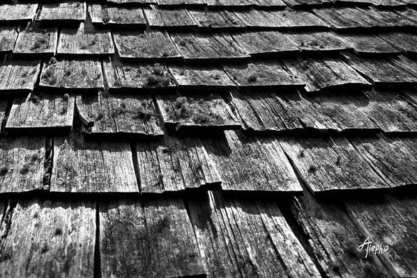Tejas de madera. El Paují, Edo Bolívar, Venezuela