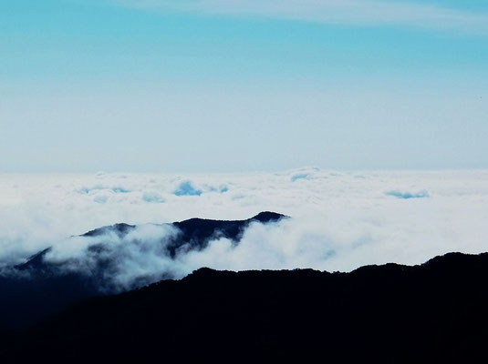 "Sea of clouds from ""Iroha-zaka"" slope in the morning"