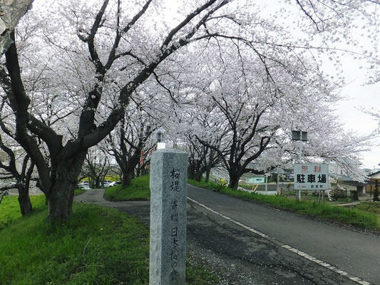 桜堤公園の南側の碑