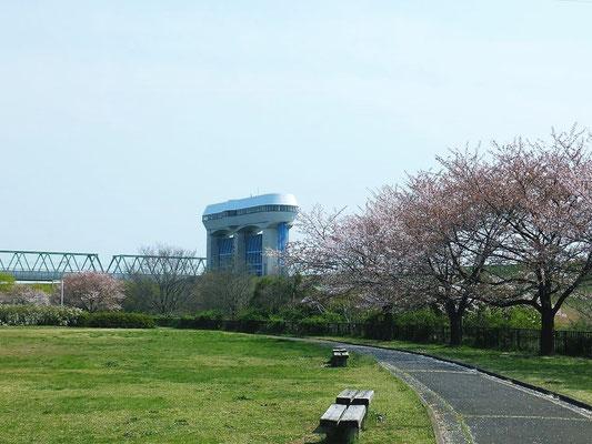 さくら草公園近くの鴨川水門(荒川への放水箇所)