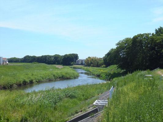 川越市上新河岸付近の新河岸川