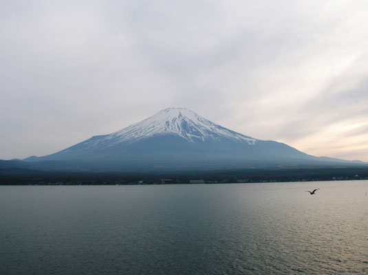 From Lake Yamanaka