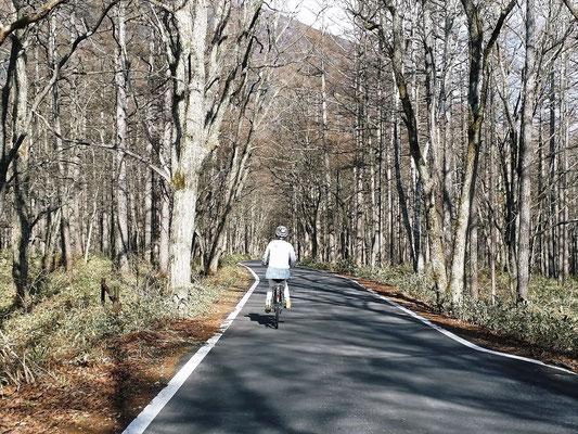 道路を独り占めでのサイクリング