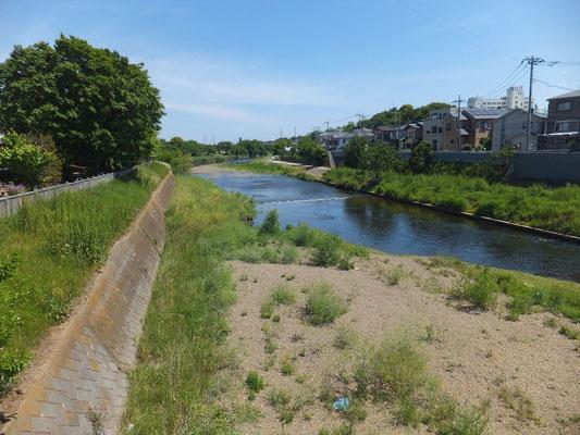 志木市付近の新河岸川