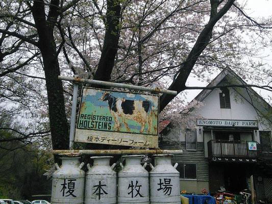 Enomoto Diary Farm, Ageo