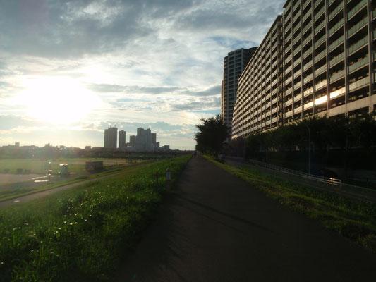 多摩川土手の散歩コース。自転車の往来も多い場所です。