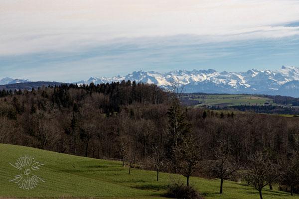 Panorama von der Rigi bis zum Titlis