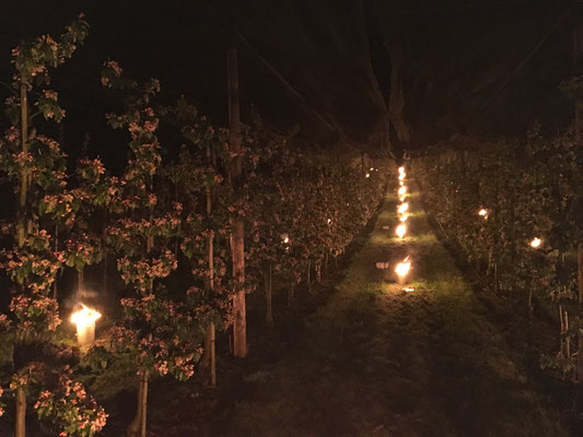 Nacht vom 19.04.2017 auf den 20.04.2017 / 21.04.2017 Heizen mit Frostkerzen in den Apfelanlagen
