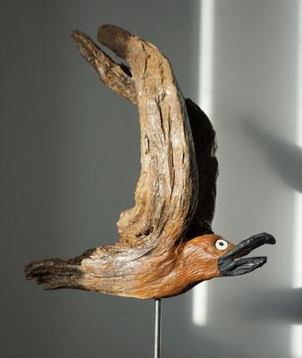 Sturmvogel Sabine Preis a. A.