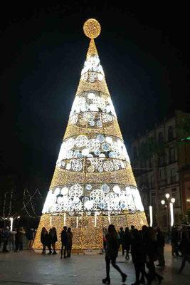 Weihnachtsbaum - Sevilla