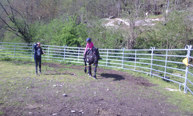 "voltige lors d'un stage ""poney fun"""