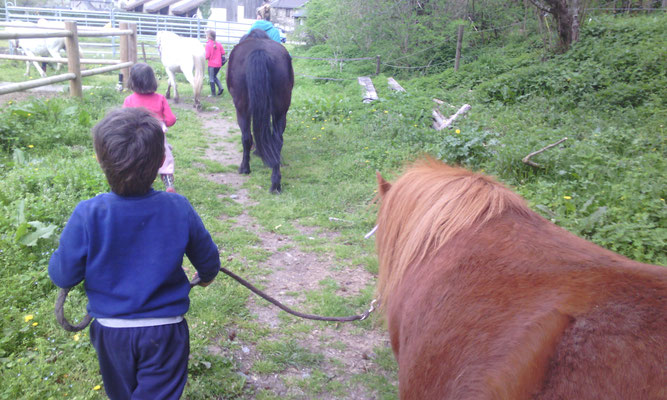 accompagner son poney au pré