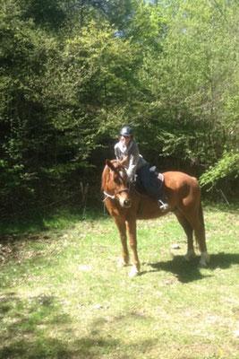 Chaman commence sa carrière de cheval de tête