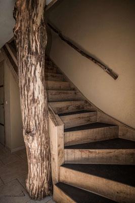 La Maison du Vivier, gîte 6 personnes à Durbuy - Escalier vers les chambres