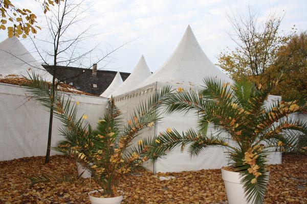 Zeltvermietung Marwitz Pagodenzelt Partyzelt Festzelt Pavillon Pagodenzelte 5x5m Festzelt Zeltverleih Oberhavel Partyzelt mieten Zeltpagode 3x3m Pavillon