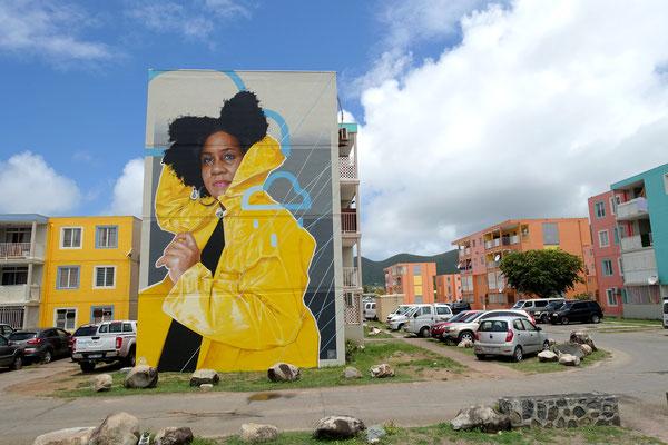 GRAND ECART - Acrylic and spraypaint on wall - 11 x 7 m - Saint-Martin (2021)