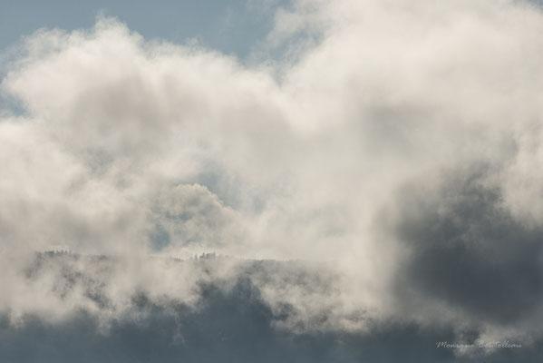 Nuage de brume