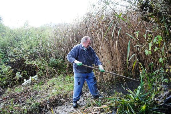 Beim Biotoppflegeeinsatz