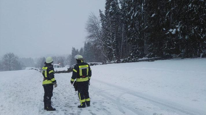 Feuerwehr Ermengerst - Straßensperre wegen umgestürzten Baum in der Römerstraße (Ermengerst)