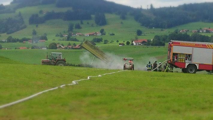 Heißes Heu wird auf dem Feld verteilt