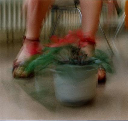 Blumentopf | 2000 | inszenierte Fotografie | Barbara Flatten