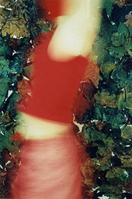Leaves 1 | 2002 | inszenierte Fotografie | Barbara Flatten