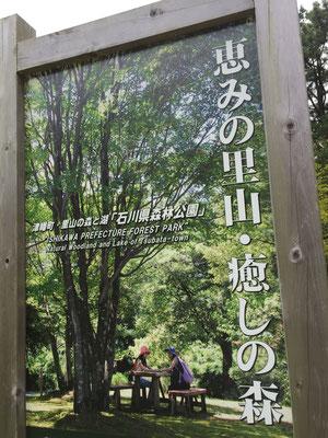 恵みの里山・癒しの森