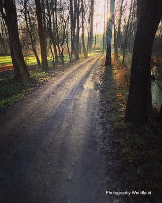 copyright Spreewald Ferienwohnung Wendland Foto 39