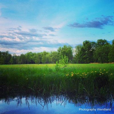 copyright Spreewald Ferienwohnung Wendland Foto 14