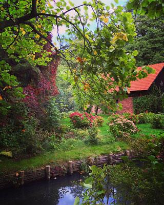 Spreewald Ferienwohnung Wendland Außenbereich Foto 13