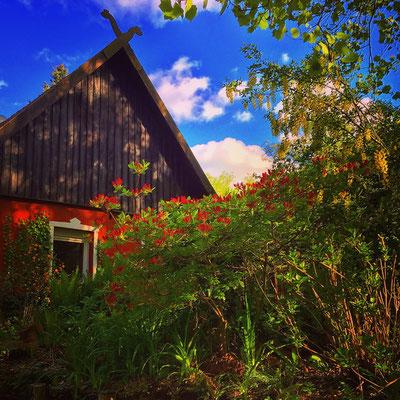 Spreewald Ferienwohnung Wendland Außenbereich Foto 6