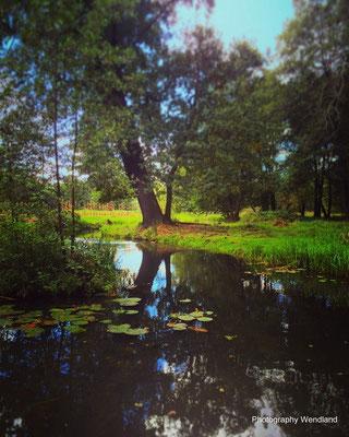 copyright Spreewald Ferienwohnung Wendland Foto 20