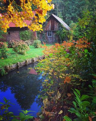 Spreewald Ferienwohnung Wendland Außenbereich Foto 15