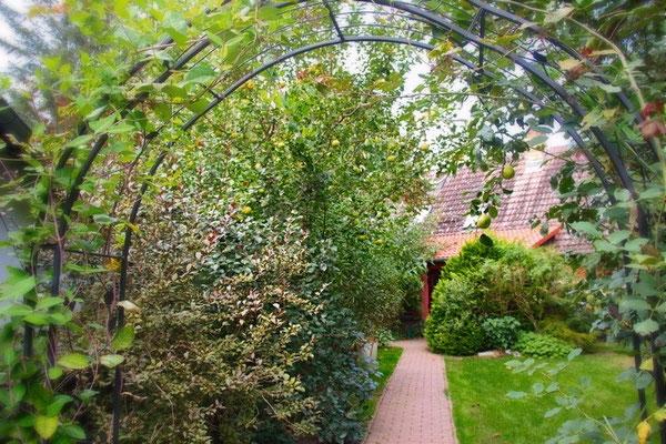 Spreewald Ferienwohnung Wendland Außenbereich Foto 1