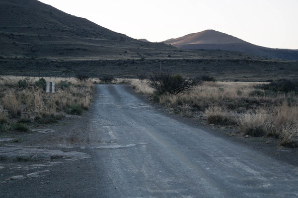 A lonely road on the way to the farm I'm staying at.
