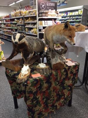 mit von der Partie Dachs und Fuchs
