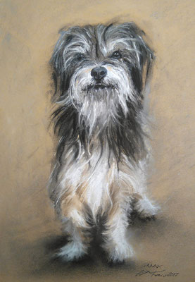 """Max"", Pastell, 29 x 39"